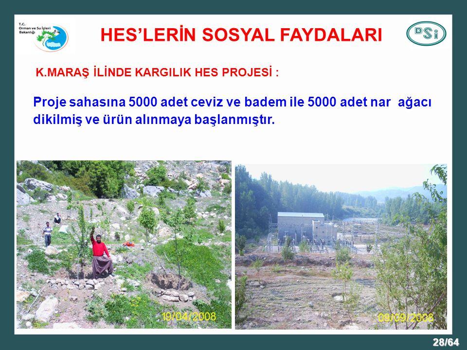 28/64 K.MARAŞ İLİNDE KARGILIK HES PROJESİ : Proje sahasına 5000 adet ceviz ve badem ile 5000 adet nar ağacı dikilmiş ve ürün alınmaya başlanmıştır.
