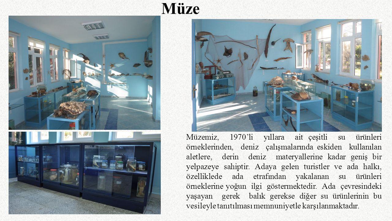 Müzemiz, 1970'li yıllara ait çeşitli su ürünleri örneklerinden, deniz çalışmalarında eskiden kullanılan aletlere, derin deniz materyallerine kadar gen
