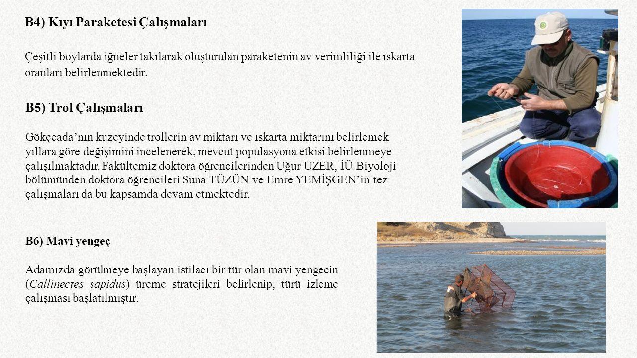 B4) Kıyı Paraketesi Çalışmaları Çeşitli boylarda iğneler takılarak oluşturulan paraketenin av verimliliği ile ıskarta oranları belirlenmektedir. B5) T