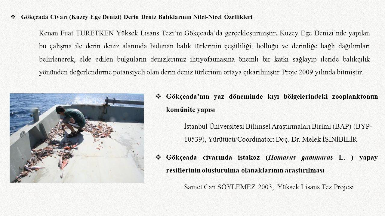  Gökçeada Civarı (Kuzey Ege Denizi) Derin Deniz Balıklarının Nitel-Nicel Özellikleri Kenan Fuat TÜRETKEN Yüksek Lisans Tezi'ni Gökçeada'da gerçekleşt
