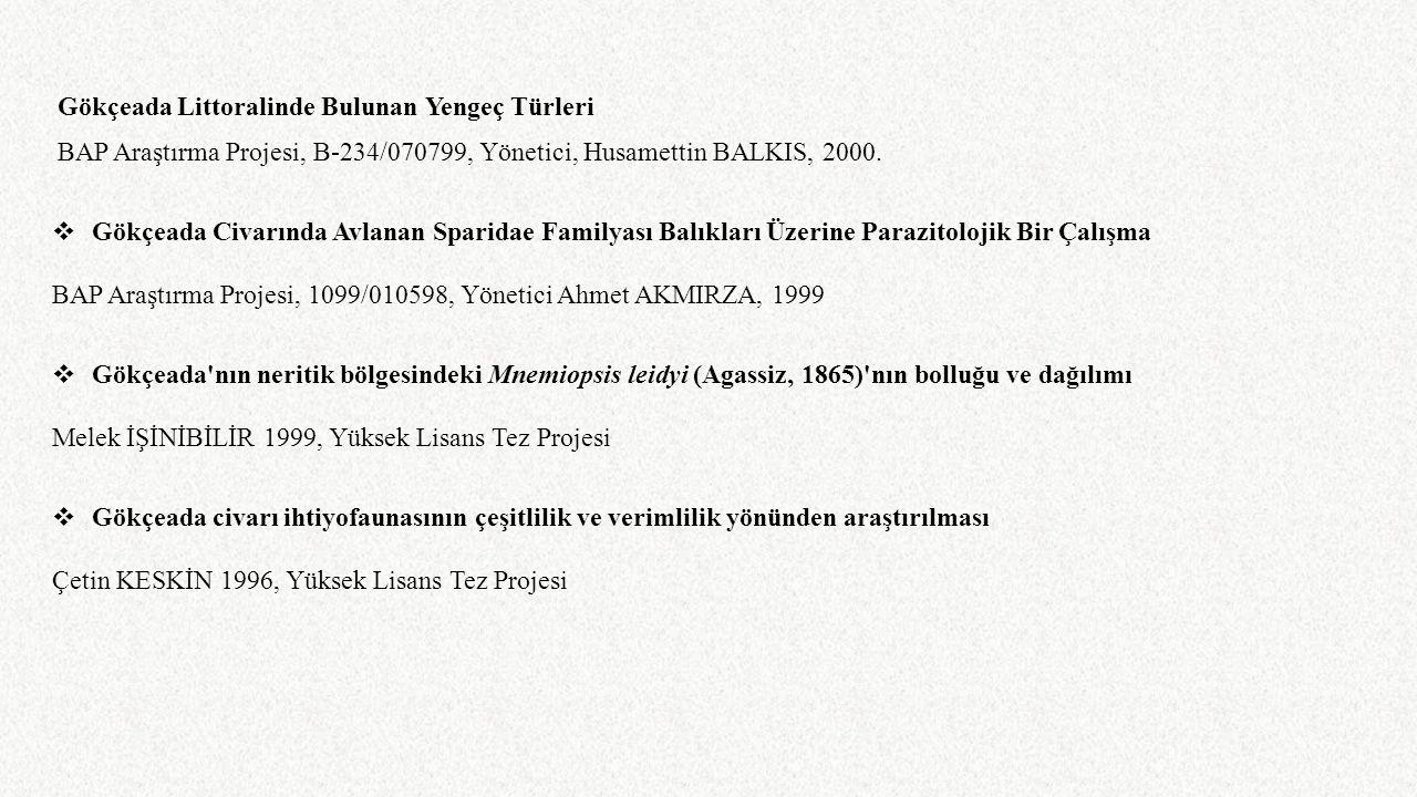 Gökçeada Littoralinde Bulunan Yengeç Türleri BAP Araştırma Projesi, B-234/070799, Yönetici, Husamettin BALKIS, 2000.  Gökçeada Civarında Avlanan Spar