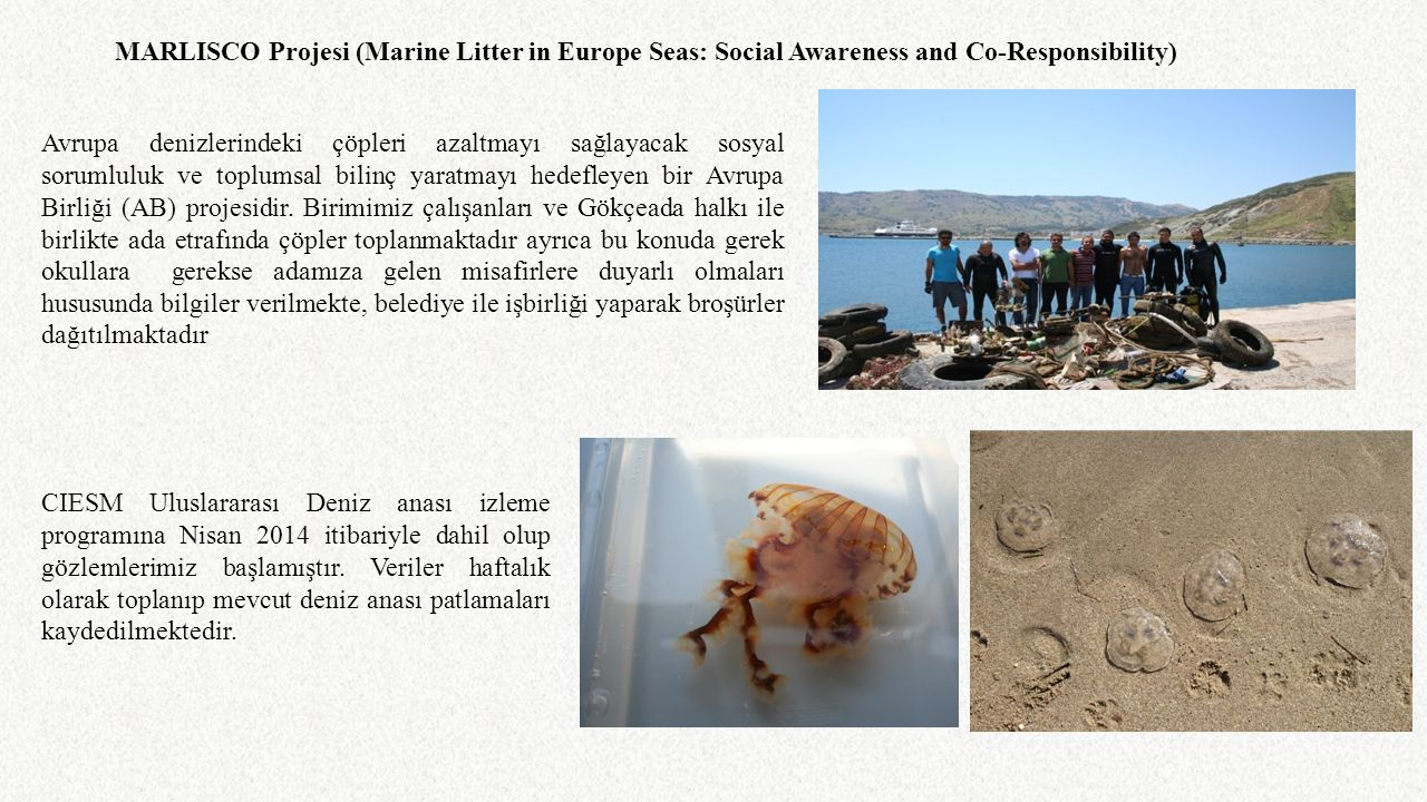 CIESM Uluslararası Deniz anası izleme programına Nisan 2014 itibariyle dahil olup gözlemlerimiz başlamıştır. Veriler haftalık olarak toplanıp mevcut d