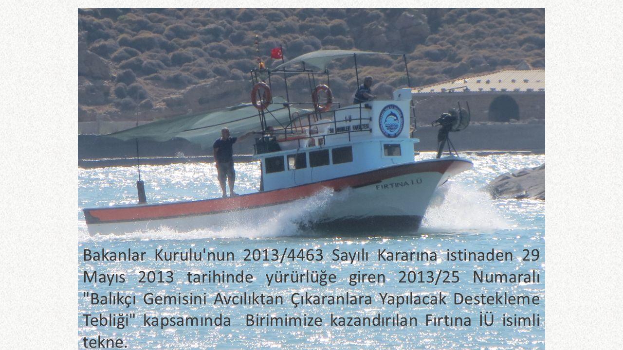 Araştırma Gemisi Yunus 7 Dalış teknesi Gümüş