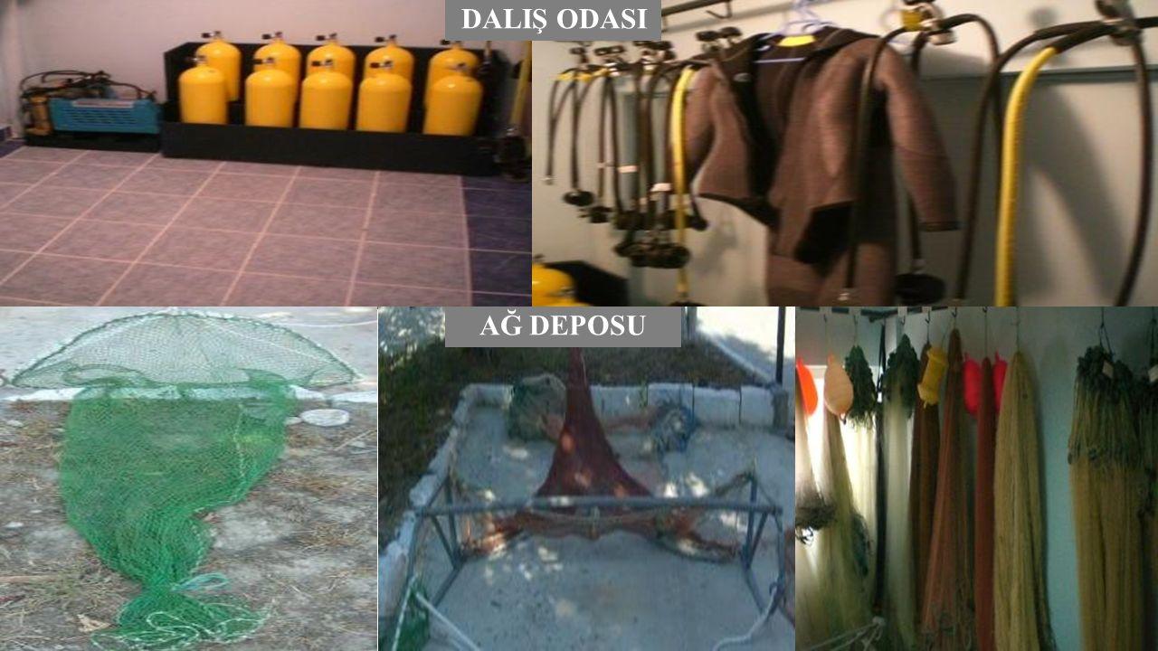 Müzemiz, 1970'li yıllara ait çeşitli su ürünleri örneklerinden, deniz çalışmalarında eskiden kullanılan aletlere, derin deniz materyallerine kadar geniş bir yelpazeye sahiptir.