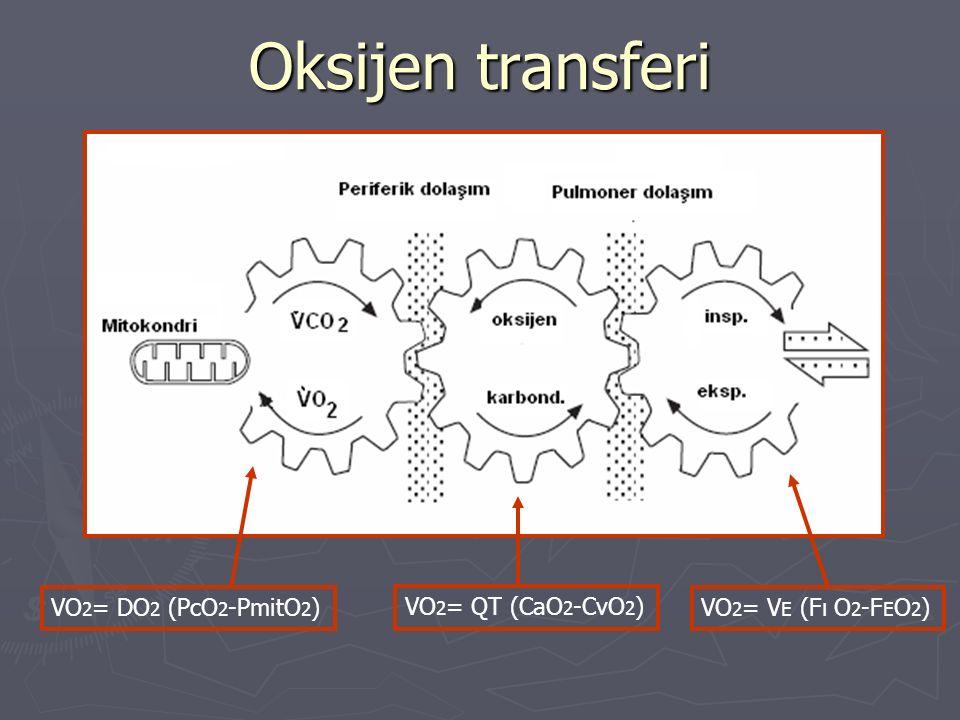 Kardiyovasküler sistem Santral dolaşım Kardiyak output Arteryel kan akımı Hemoglobin konsantrasyonu Periferik dolaşım Egzersize katılmayan bölgelere akım Kas kan akımı Kas kapiller yoğunluğu O 2 diffüzyonu Oksijen değişimi Solunum sistemi O 2 diffüzyonu Vantilasyon V/Q oranı D A-V O 2 Kas-iskelet sistemi Enzimler ve oksidatif potansiyel Enerji depolanma ve salınması Miyoglobülin Mitokondri boyut ve sayısı Oksijen tüketimini (VO 2 ) belirleyen koşullar