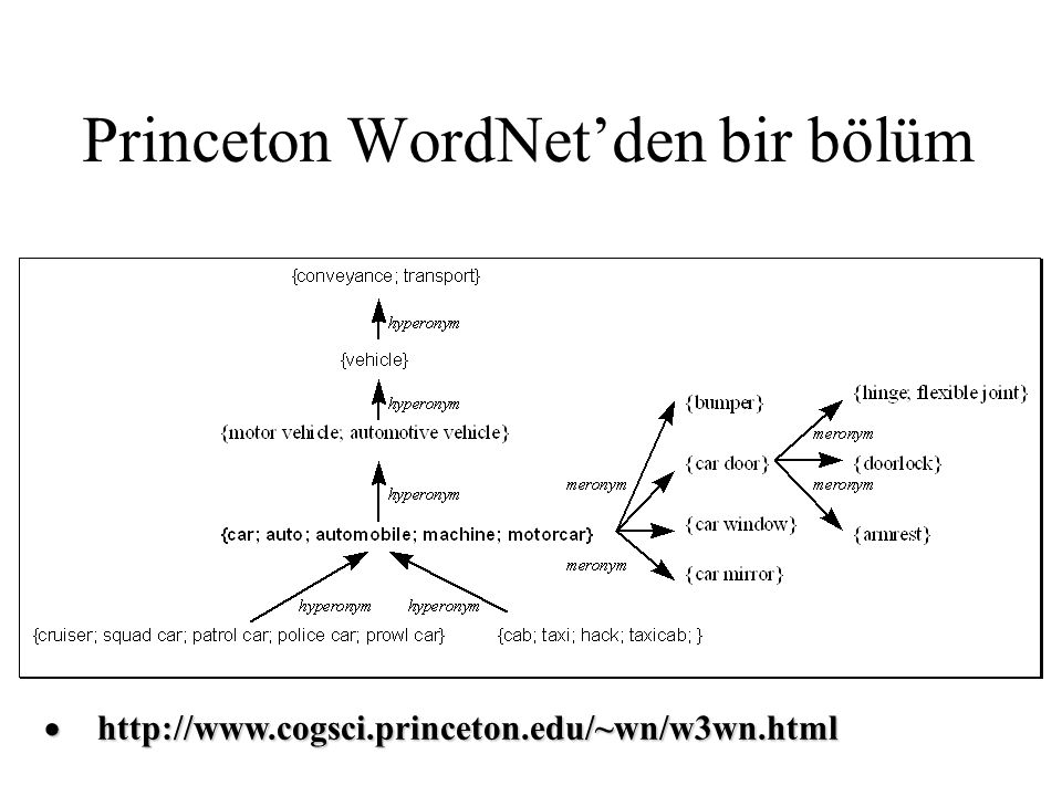 Princeton WordNet'den bir bölüm  http://www.cogsci.princeton.edu/~wn/w3wn.html