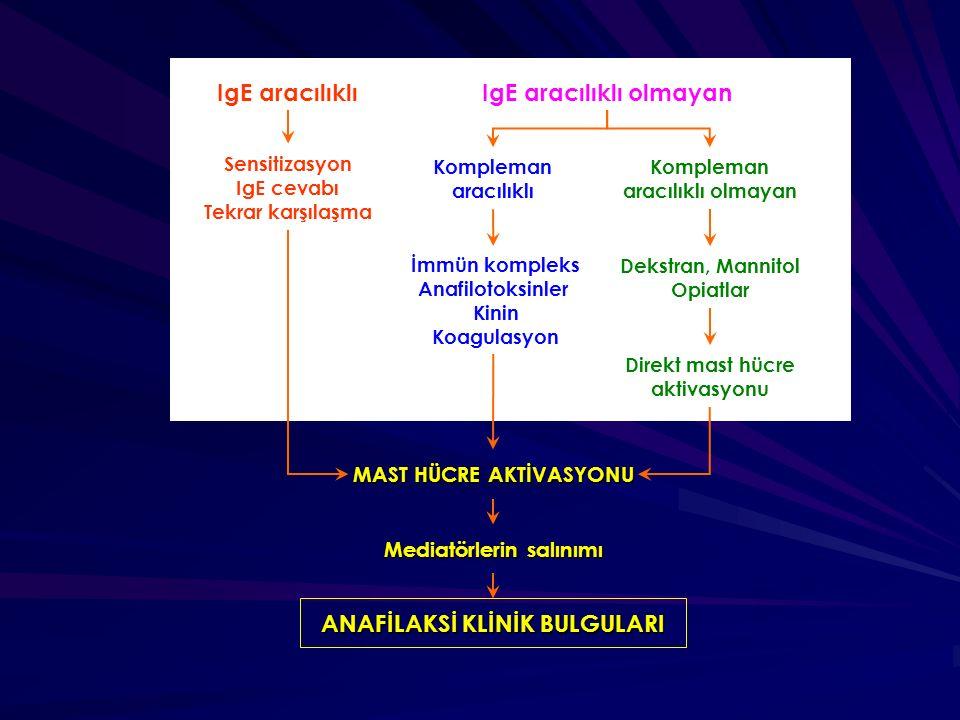 IgE aracılıklıIgE aracılıklı olmayan Kompleman aracılıklı olmayan Sensitizasyon IgE cevabı Tekrar karşılaşma Kompleman aracılıklı İmmün kompleks Anafi