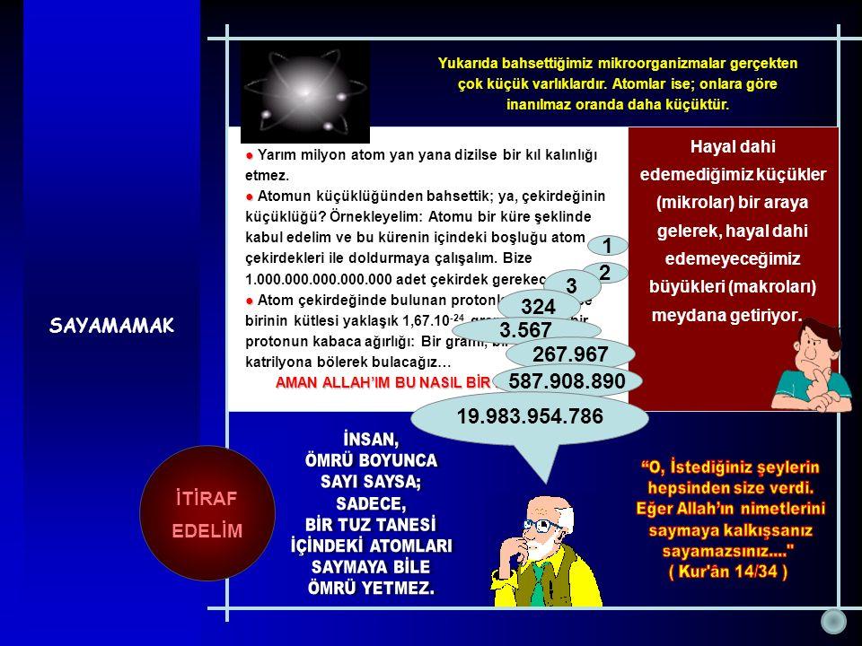 SAYAMAMAK ● ● Yarım milyon atom yan yana dizilse bir kıl kalınlığı etmez. ● ● Atomun küçüklüğünden bahsettik; ya, çekirdeğinin küçüklüğü? Örnekleyelim