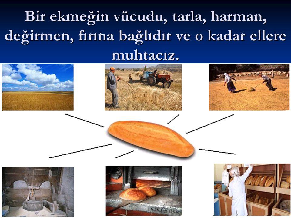 Bir ekmeğin vücudu, tarla, harman, değirmen, fırına bağlıdır ve o kadar ellere muhtacız.