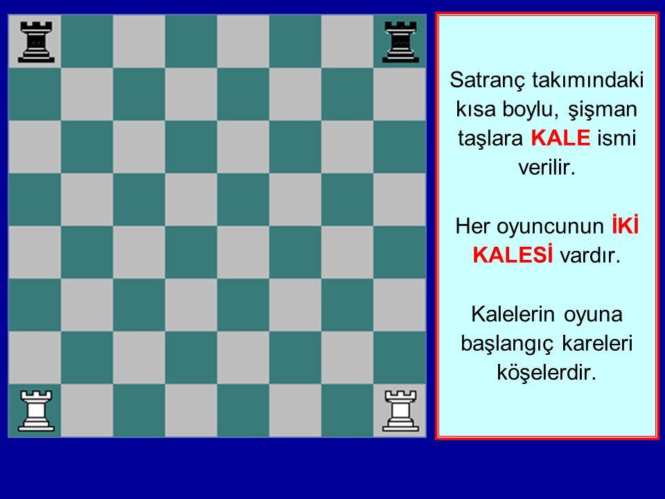 Satranç takımındaki kısa boylu, şişman taşlara KALE ismi verilir.
