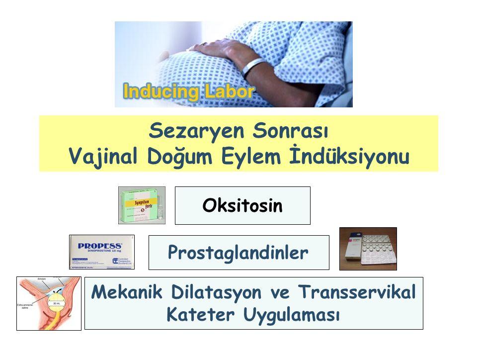 Sezaryen Sonrası Vajinal Doğum Eylem İndüksiyonu Oksitosin Prostaglandinler Mekanik Dilatasyon ve Transservikal Kateter Uygulaması