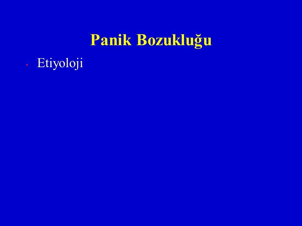 Etiyoloji Panik Bozukluğu