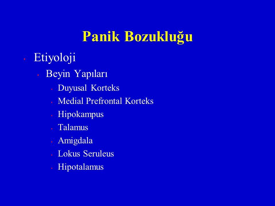 Etiyoloji Beyin Yapıları Duyusal Korteks Medial Prefrontal Korteks Hipokampus Talamus Amigdala Lokus Seruleus Hipotalamus Panik Bozukluğu