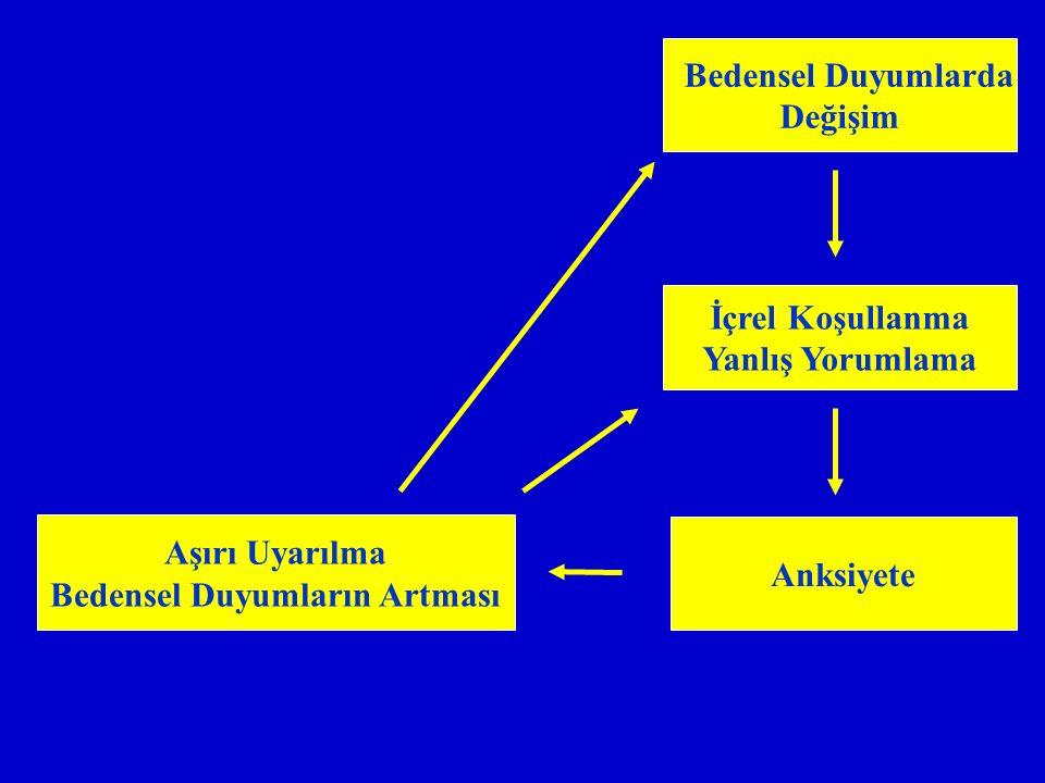 Bedensel Duyumlarda Değişim Aşırı Uyarılma Bedensel Duyumların Artması Anksiyete İçrel Koşullanma Yanlış Yorumlama