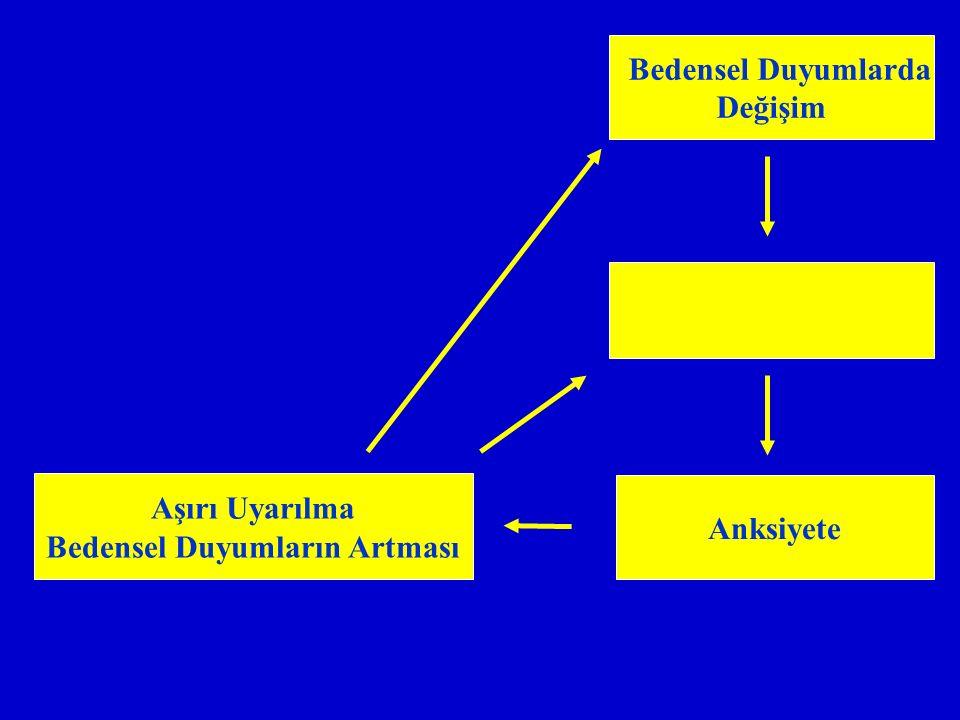 Bedensel Duyumlarda Değişim Aşırı Uyarılma Bedensel Duyumların Artması Anksiyete