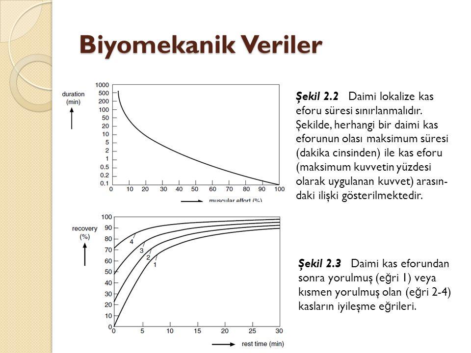 Biyomekanik Veriler Şekil 2.2 Daimi lokalize kas eforu süresi sınırlanmalıdır. Şekilde, herhangi bir daimi kas eforunun olası maksimum süresi (dakika
