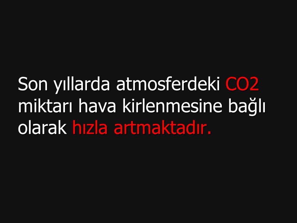 Son yıllarda atmosferdeki CO2 miktarı hava kirlenmesine bağlı olarak hızla artmaktadır.