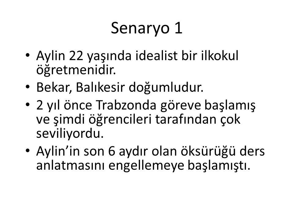 Senaryo 1 Aylin 22 yaşında idealist bir ilkokul öğretmenidir. Bekar, Balıkesir doğumludur. 2 yıl önce Trabzonda göreve başlamış ve şimdi öğrencileri t