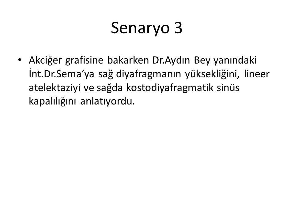 Senaryo 3 Akciğer grafisine bakarken Dr.Aydın Bey yanındaki İnt.Dr.Sema'ya sağ diyafragmanın yüksekliğini, lineer atelektaziyi ve sağda kostodiyafragm