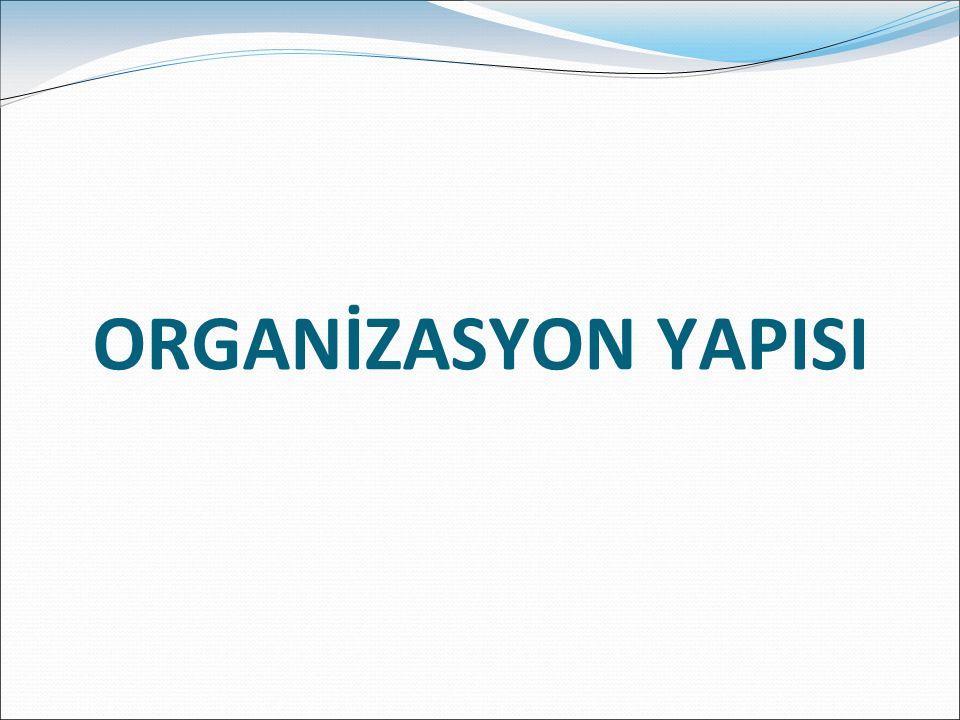 ORGANİZASYON YAPISI