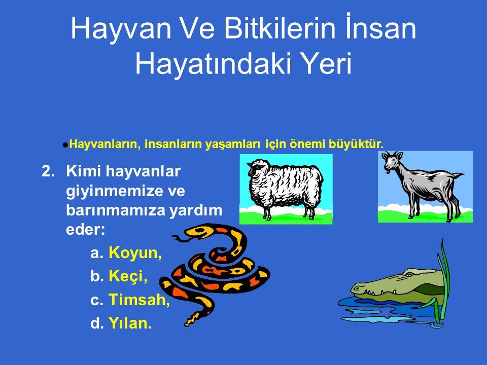 Hayvan Ve Bitkilerin İnsan Hayatındaki Yeri  Kimi hayvanlar giyinmemize ve barınmamıza yardım eder:  Koyun,  Keçi,  Timsah,  Yılan.