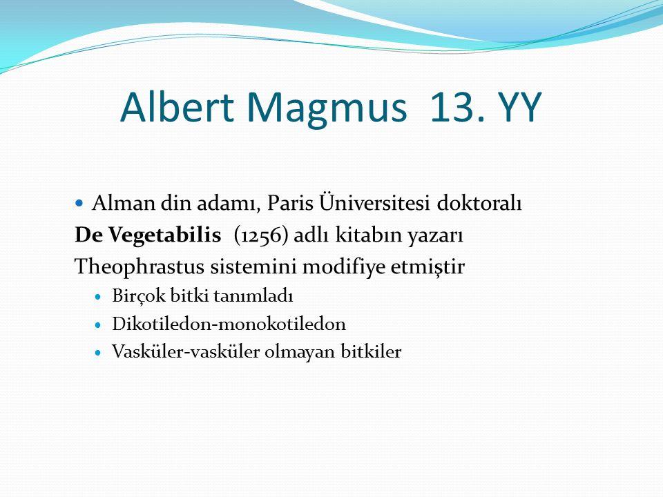Albert Magmus 13. YY Alman din adamı, Paris Üniversitesi doktoralı De Vegetabilis (1256) adlı kitabın yazarı Theophrastus sistemini modifiye etmiştir