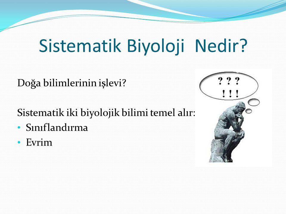 Sistematik Biyoloji Nedir? Doğa bilimlerinin işlevi? Sistematik iki biyolojik bilimi temel alır: Sınıflandırma Evrim