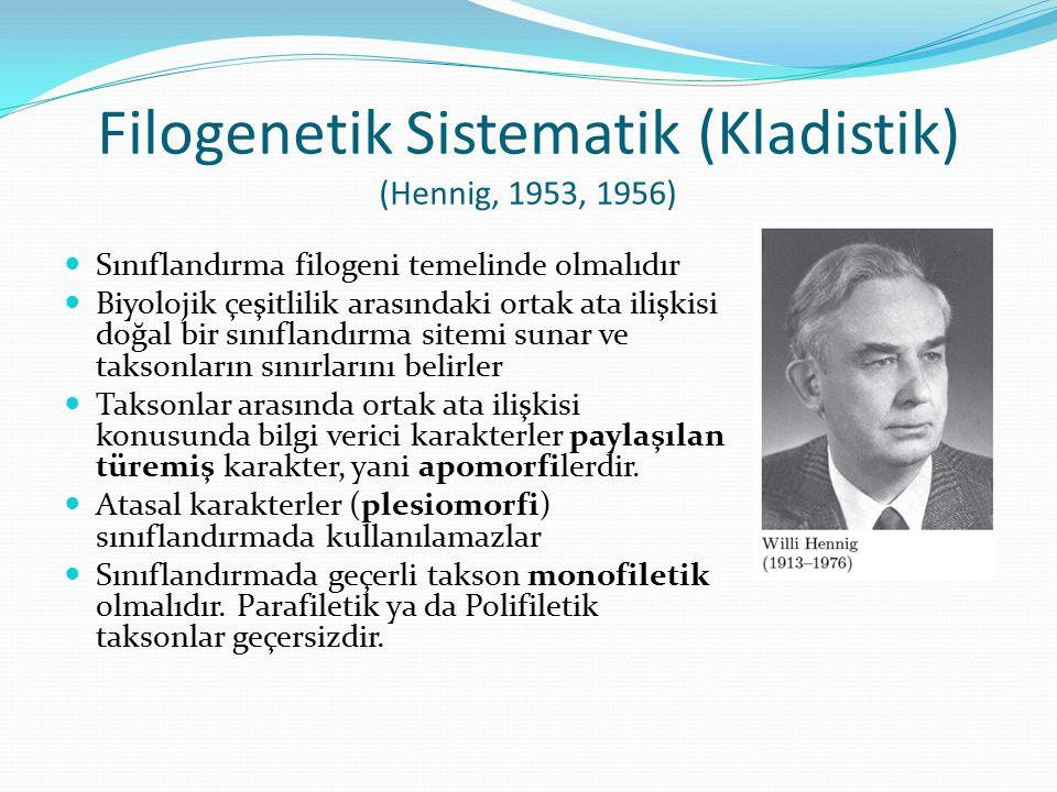 Filogenetik Sistematik (Kladistik) (Hennig, 1953, 1956) Sınıflandırma filogeni temelinde olmalıdır Biyolojik çeşitlilik arasındaki ortak ata ilişkisi