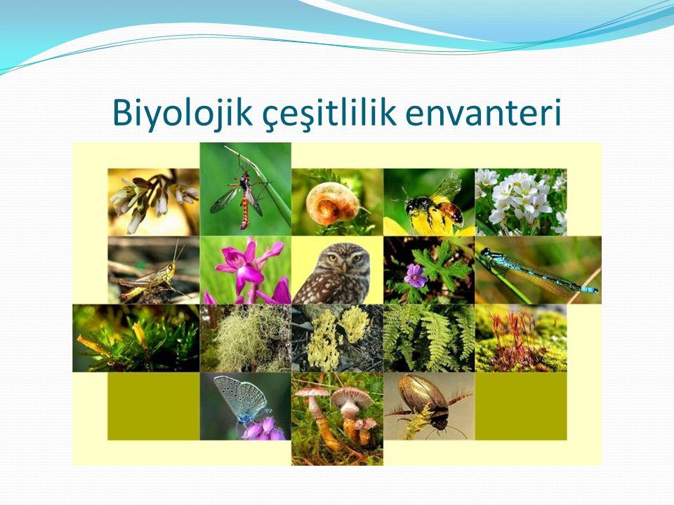 Biyolojik çeşitlilik envanteri
