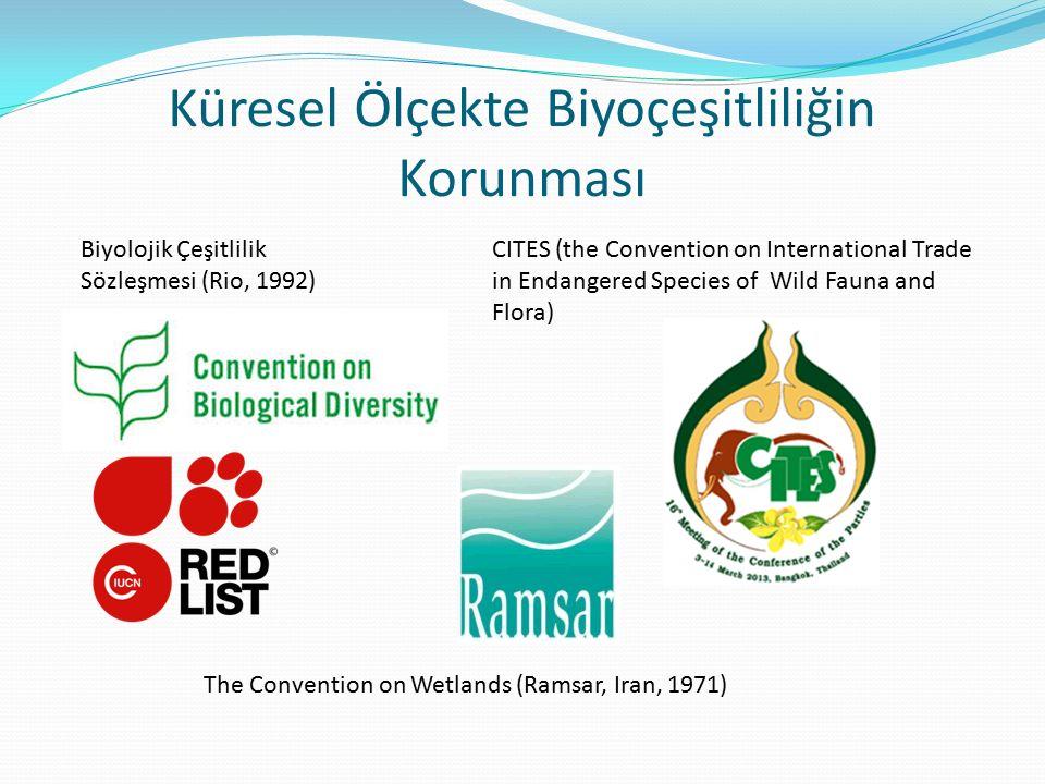 Küresel Ölçekte Biyoçeşitliliğin Korunması CITES (the Convention on International Trade in Endangered Species of Wild Fauna and Flora) Biyolojik Çeşit