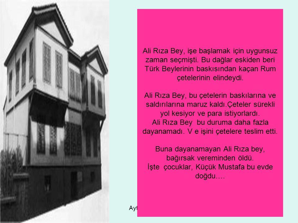 Ayten IŞILDAĞ8 Ali Rıza Bey, işe başlamak için uygunsuz zaman seçmişti. Bu dağlar eskiden beri Türk Beylerinin baskısından kaçan Rum çetelerinin elind