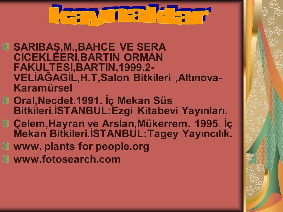 SARIBAŞ,M.,BAHCE VE SERA CICEKLEERI,BARTIN ORMAN FAKULTESI,BARTIN,1999.2- VELİAĞAGİL,H.T,Salon Bitkileri,Altınova- Karamürsel Oral,Necdet.1991. İç Mek