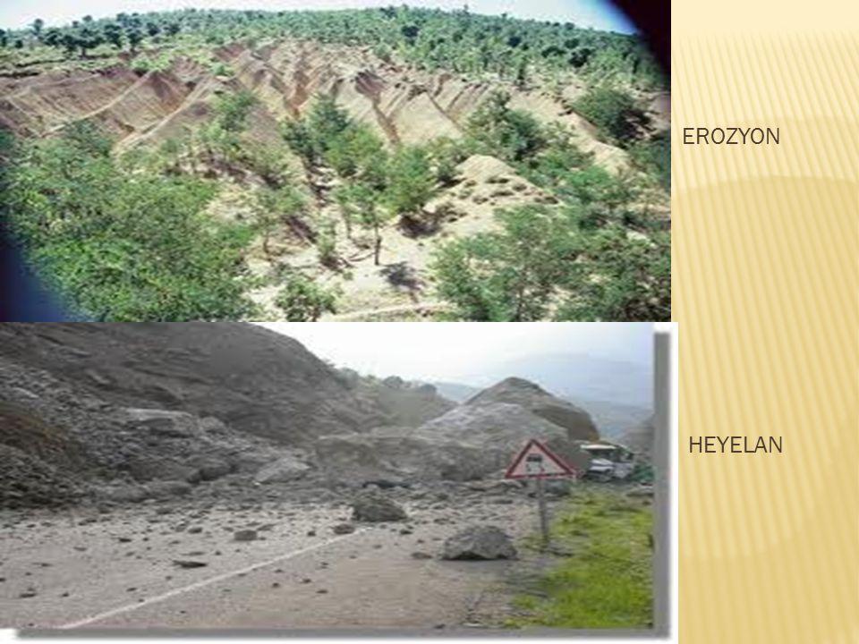 NOT: Ülkemizde rüzgar ve akarsu olmak üzere iki tür erozyon ekilidir.