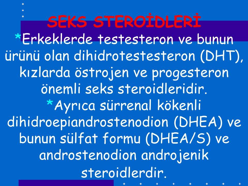 SEKS STEROİDLERİ *Erkeklerde testesteron ve bunun ürünü olan dihidrotestesteron (DHT), kızlarda östrojen ve progesteron önemli seks steroidleridir. *A