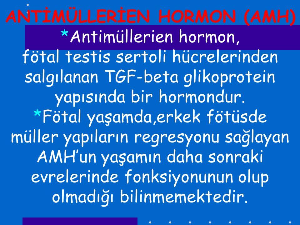 ANTİMÜLLERİEN HORMON (AMH) *Antimüllerien hormon, fötal testis sertoli hücrelerinden salgılanan TGF-beta glikoprotein yapısında bir hormondur. *Fötal