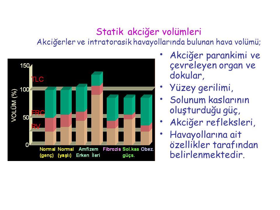 Statik akciğer volümleri Akciğerler ve intratorasik havayollarında bulunan hava volümü; Akciğer parankimi ve çevreleyen organ ve dokular, Yüzey gerili