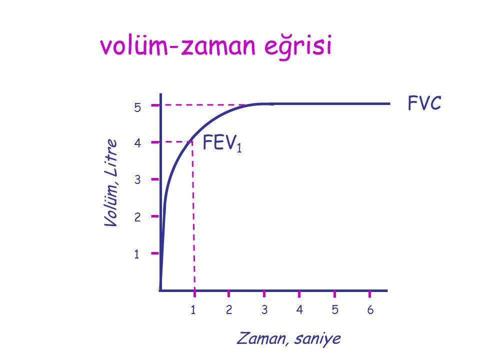 123456 1 2 3 4 Volüm, Litre Zaman, saniye FVC 5 volüm-zaman eğrisi FEV 1