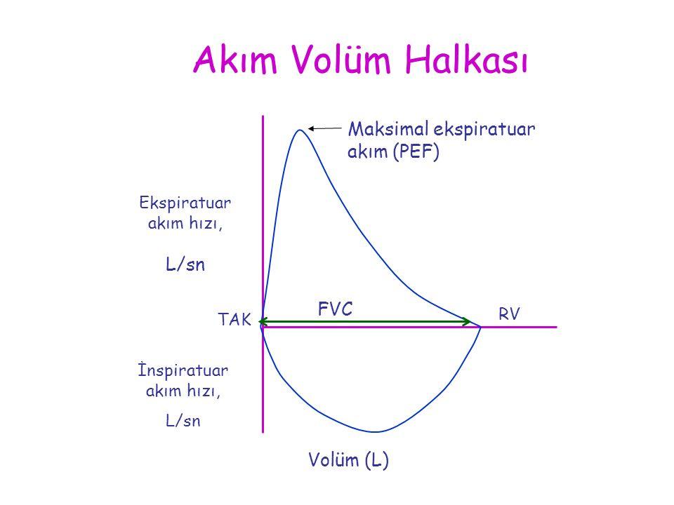 Akım Volüm Halkası Ekspiratuar akım hızı, L/sn Volüm (L) FVC Maksimal ekspiratuar akım (PEF) İnspiratuar akım hızı, L/sn RV TAK