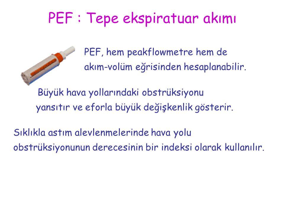 PEF : Tepe ekspiratuar akımı PEF, hem peakflowmetre hem de akım-volüm eğrisinden hesaplanabilir. Büyük hava yollarındaki obstrüksiyonu yansıtır ve efo