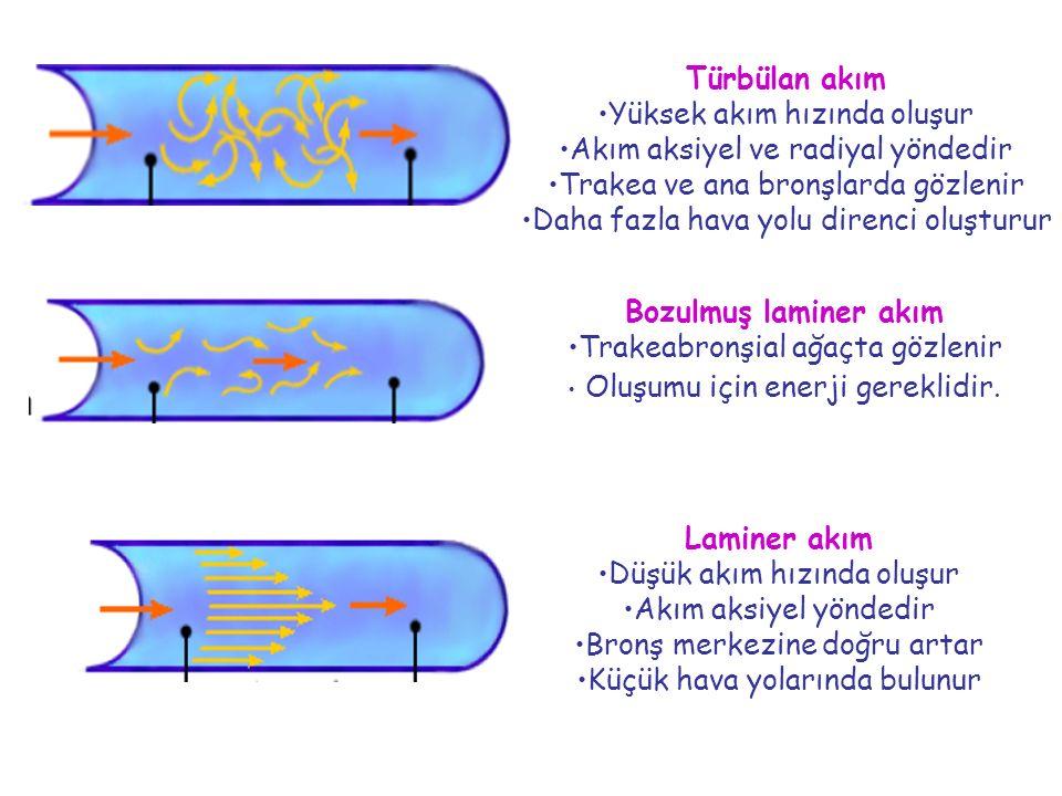 Türbülan akım Yüksek akım hızında oluşur Akım aksiyel ve radiyal yöndedir Trakea ve ana bronşlarda gözlenir Daha fazla hava yolu direnci oluşturur Lam