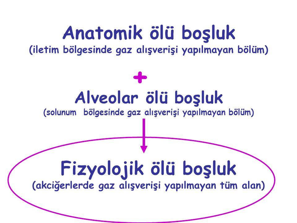Anatomik ölü boşluk (iletim bölgesinde gaz alışverişi yapılmayan bölüm) Alveolar ölü boşluk (solunum bölgesinde gaz alışverişi yapılmayan bölüm) + Fiz