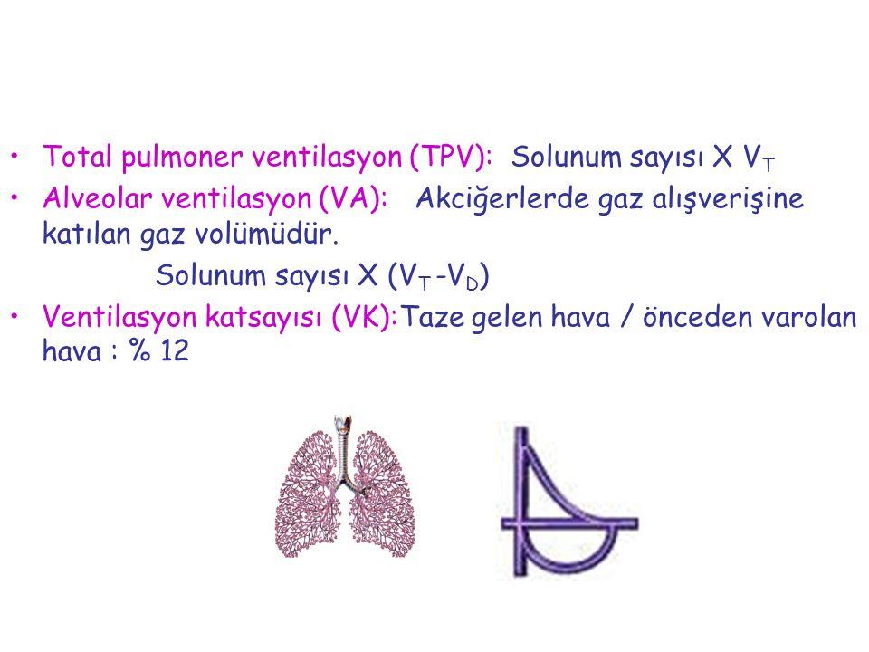 Total pulmoner ventilasyon (TPV): Solunum sayısı X V T Alveolar ventilasyon (VA): Akciğerlerde gaz alışverişine katılan gaz volümüdür. Solunum sayısı