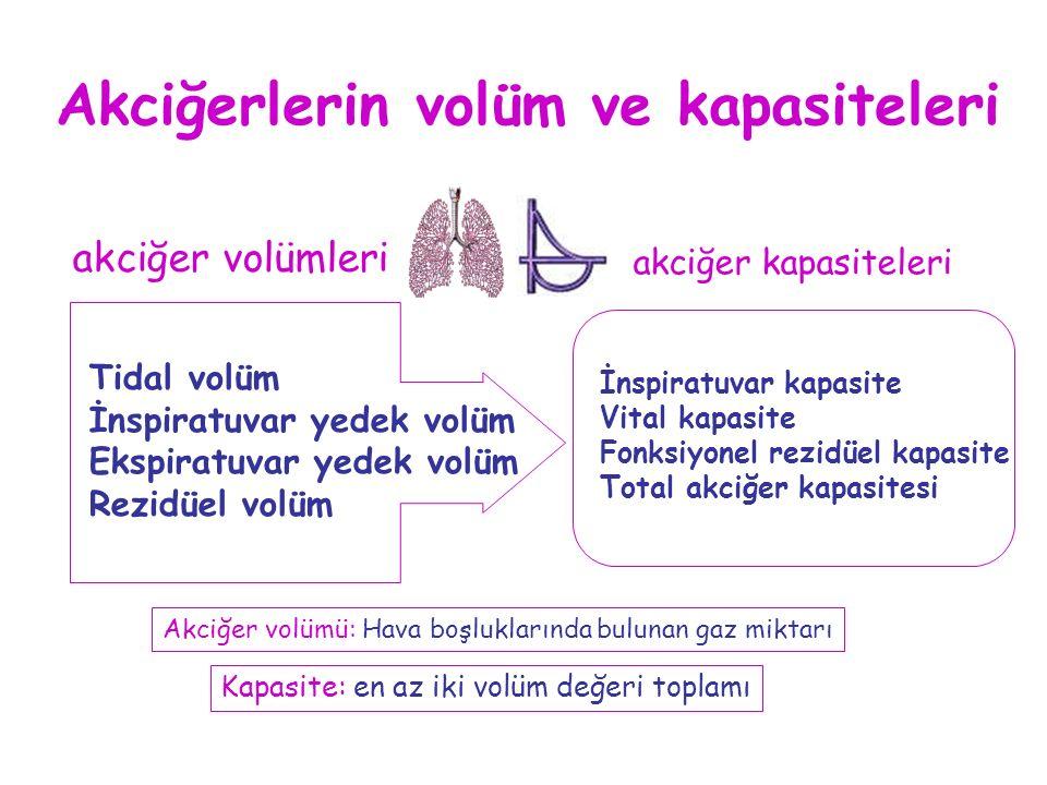 Tidal volüm İnspiratuvar yedek volüm Ekspiratuvar yedek volüm Rezidüel volüm akciğer volümleri akciğer kapasiteleri İnspiratuvar kapasite Vital kapasi