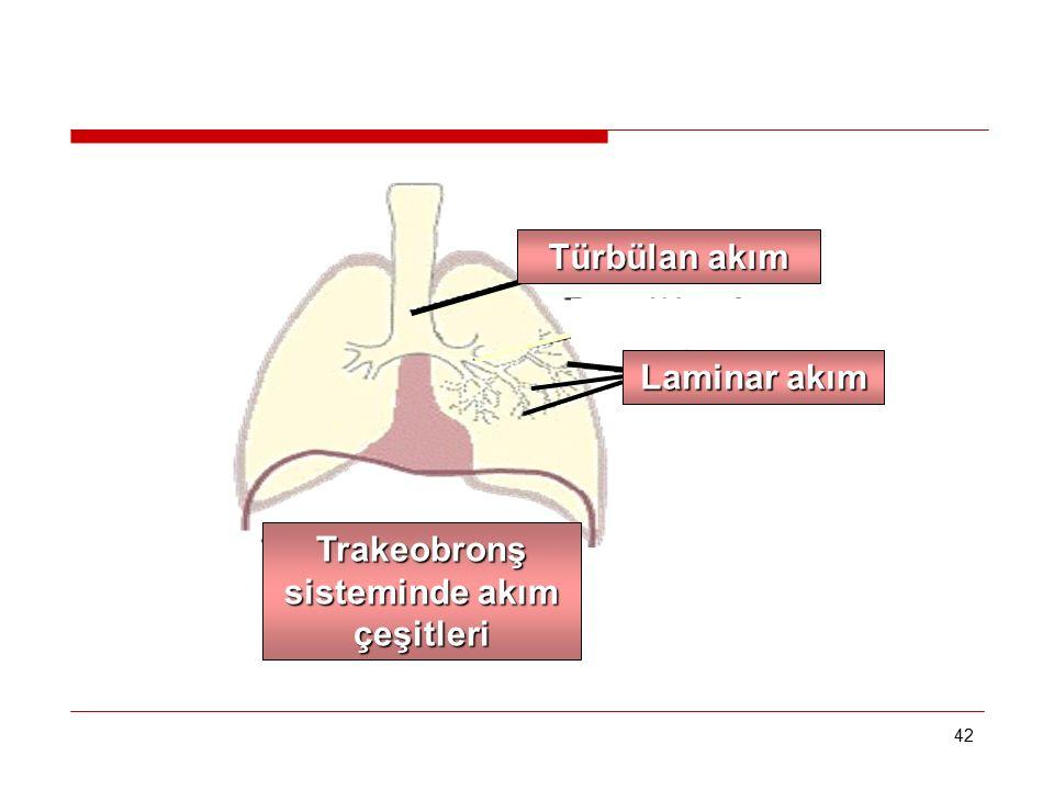 42 Türbülan akım Trakeobronş sisteminde akım çeşitleri Laminar akım