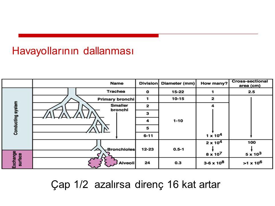 44 Havayollarının dallanması Çap 1/2 azalırsa direnç 16 kat artar