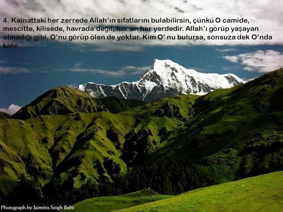 4. Kainattaki her zerrede Allah'ın sıfatlarını bulabilirsin, çünkü O camide, mescitte, kilisede, havrada de ğ il, her an her yerdedir. Allah'ı görüp y