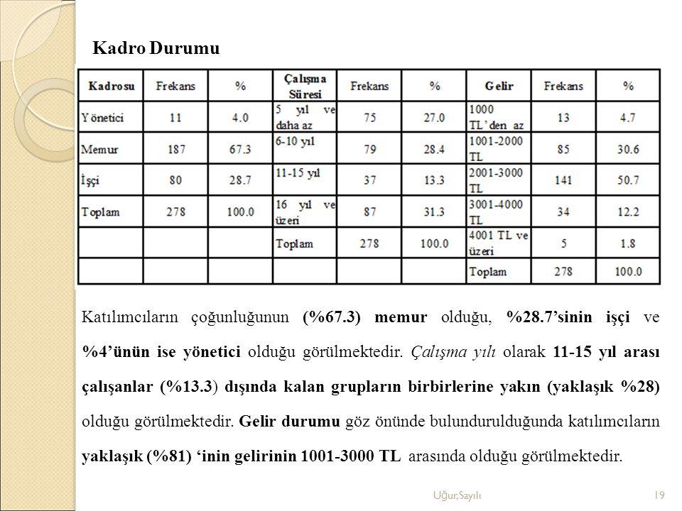 Kadro Durumu U ğ ur,Sayılı19 Katılımcıların çoğunluğunun (%67.3) memur olduğu, %28.7'sinin işçi ve %4'ünün ise yönetici olduğu görülmektedir. Çalışma