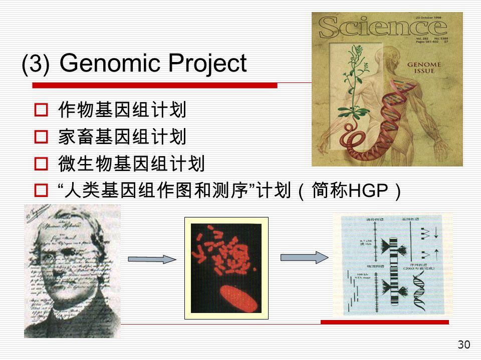 30 (3) Genomic Project  作物基因组计划  家畜基因组计划  微生物基因组计划  人类基因组作图和测序 计划(简称 HGP )