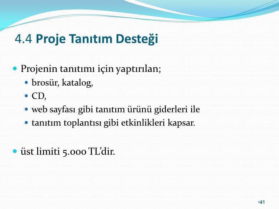 4.4 Proje Tanıtım Desteği Projenin tanıtımı için yaptırılan; brosür, katalog, CD, web sayfası gibi tanıtım ürünü giderleri ile tanıtım toplantısı gibi