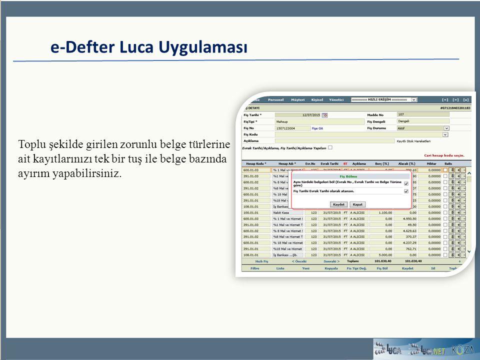 e-Defter Luca Uygulaması Toplu şekilde girilen zorunlu belge türlerine ait kayıtlarınızı tek bir tuş ile belge bazında ayırım yapabilirsiniz.